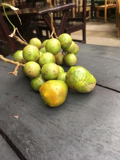 Fresh fruit, Parque Nacional Cerro Verde