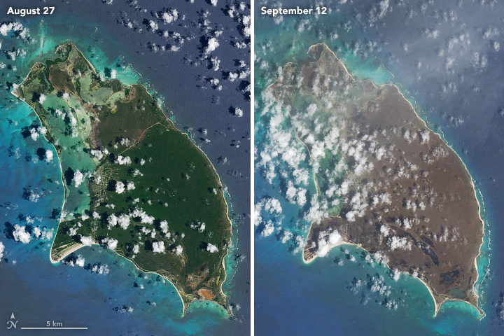 Image 2- Barbuda, 1 of 2.jpg
